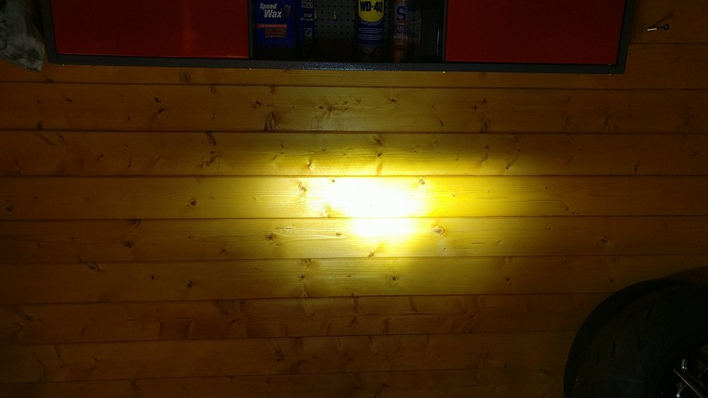 Fern LED.jpg